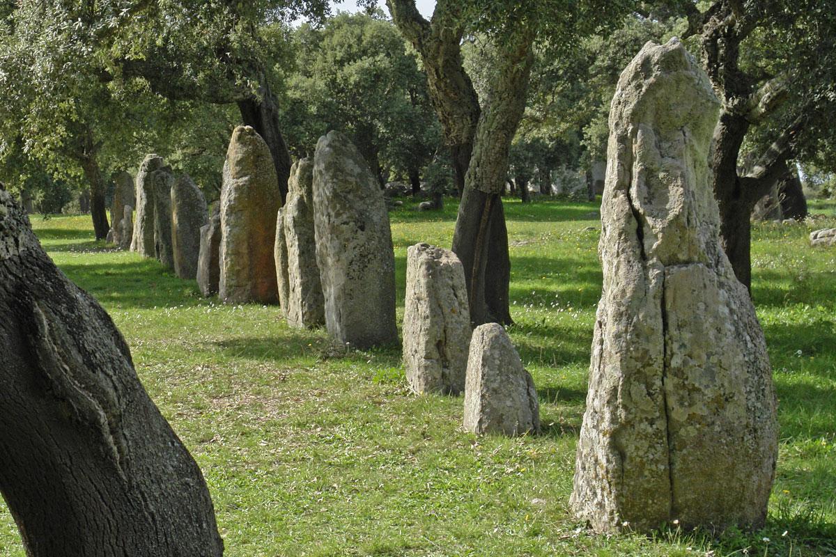 Menhir, complesso archeologico di Pranu Muttedu, Cagliari